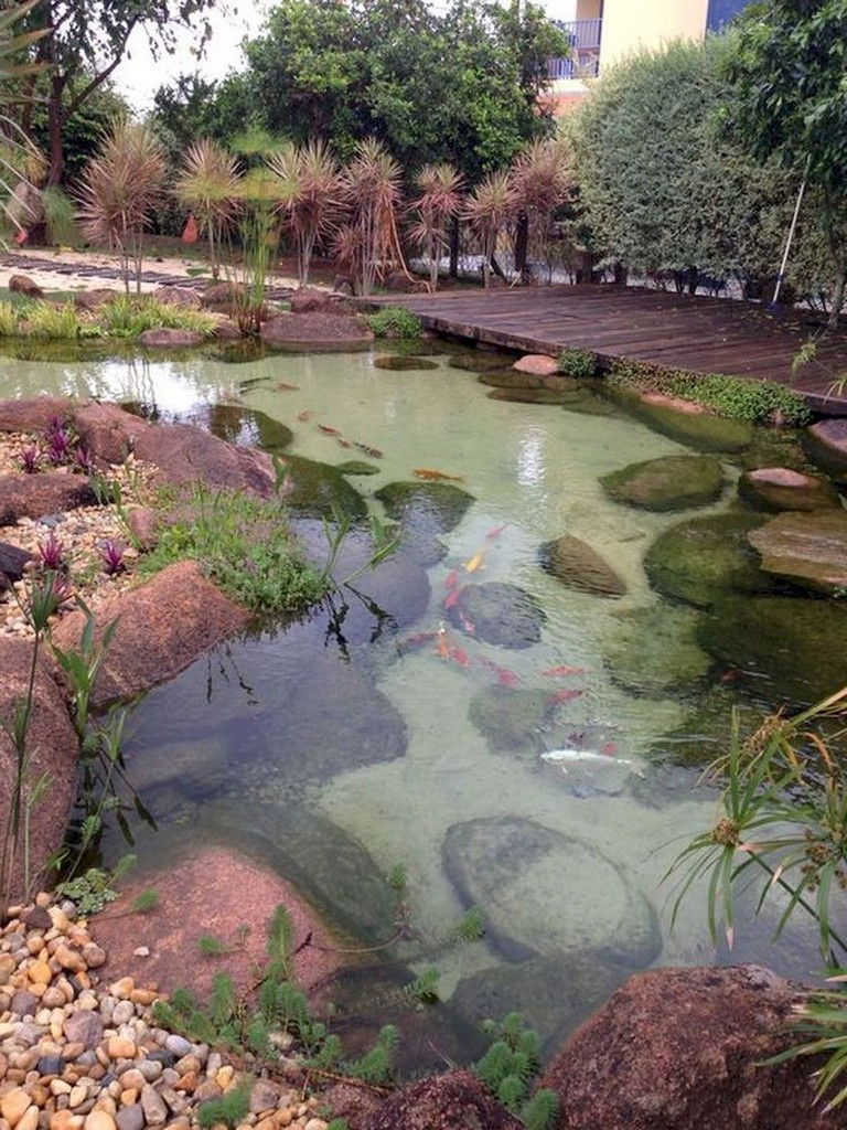 62+ Beautiful Backyard Ponds and Water Feature Landscaping ...